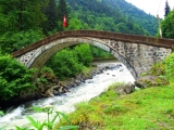 Rize description (5)